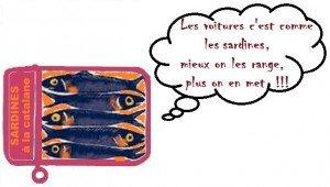 sardine rva66